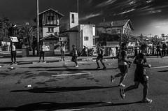 Maratón 42K Montevideo   170423-0000230-jikatu (jikatu) Tags: 162 42km carrasco gr jikatu marathon montevideo ricoh uruguay bw black white blackwhite monocrohme monocromo