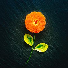 Healthy flower (RoCafe on/off) Tags: 52stilllifes fromabove stilllife fruit tangerine leaves black green orange colorful slate nikkormicro105f28 nikond600
