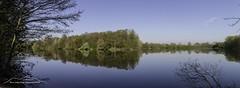 Erlensee Panorama 170424 (Bianchista) Tags: 2017 bianchista erlensee frühjahr frühling kirchhain panorama see laub spiegelung