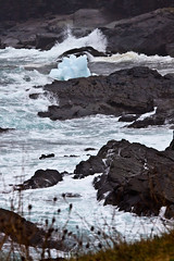 Shore at Pouch Cove 1 (LongInt57) Tags: ice iceberg floating water waves splashing splashes shore rocky rocks sea ocean atlantic pouchcove newfoundland canada white blue grey gray brown landscape nature