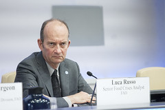 12132y7662 (FAO News) Tags: europe italy council rome