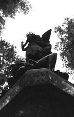 a different perspective (Weaver_23ph) Tags: quisutdeus michael satan sculpture cieplice jeleniagóra art sky nature battle enemy adversary archangel film 35mm aci revueflex analog devil defeat antonrüller