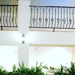 清境民宿-森之戀 (清境民宿_森之戀) Tags: 森之戀 清境森之戀民宿 清境民宿 清境農場 清境 南投 台灣 cingjing nantou taiwan