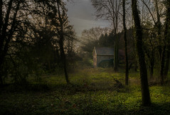 Cottage in the woods (RigieNL) Tags: woods forrest bos tree trees house nederland netherlands limburg holland sun zon sony sonya6000