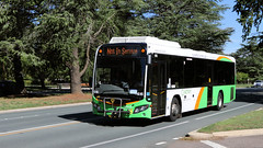 """Not in Service"" day (Jungle Jack Movements) Tags: actian act australian capital territory canberra transport orange green service commonwealth avenue albert hall bus carry take journey convey move travel passenger route stop ring bell card city suburb trip conveyance carriage vehicle depot driver trek seat ticket go hail mobile pass coach drive number tour voyage tourism work cover livery commute commuter customer traveller fare toll australia renault pr 1002 mk ii scania k32 ub custom"