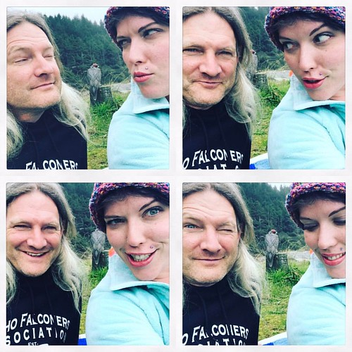 This is what happens when two falconer/biologists meet on the Oregon Coast - shenanigans! 😜😝😂  #highway101 #falconry #falcon #silly #selfie #pnwonderland #biology #beach #ocean #green #roadtrip