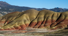 D7C_6738 (Nikulin's Photography) Tags: paintedhills