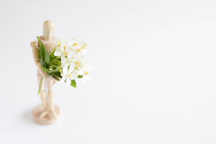 20/30: You don't bring me flowers... [Explored] (judi may) Tags: april2017amonthin30pictures mannequin flowers blossom highkey white whitebackground whiteonwhite negativespace simplicity simple minimal minimalism bokeh dof depthoffield soft softness wood woodenmannequin miniature