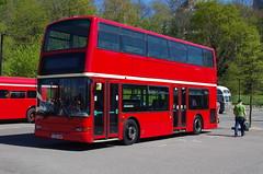 IMGP9106 (Steve Guess) Tags: cobham lbpt brooklands weybridge byfleet surrey england gb uk museum bus plaxton president lt52xah bear buses dennis trident tower transit