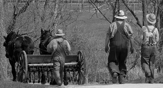 Farmer at work, Kline Creek Farm. 1 (EOS)