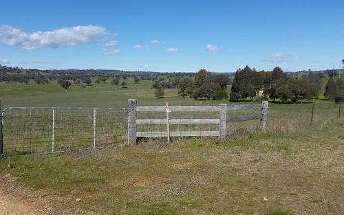 217 Tarrawingee Road, Mumbil NSW 2820