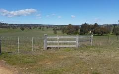 217 Tarrawingee Road, Mumbil NSW