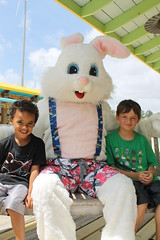 Easter Bunny 104