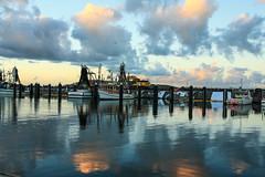 ..meet the day... (dawn.tranter) Tags: dawntranter sunrise day ocean coffsharbour boats marina reflections water sunlight warm light diamond class photographer