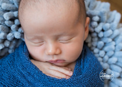 Sleeping baby boy in blue | Newton newborn photographer (iSweet Photography) Tags: babies human blue sleeping fingers soft innocent nice sweet calm newborn photographer bostonbabyphotographer bostonnewbornphotographer bostoninfantphotographer bostonchildrensphotographer bostonkidsphotographer babyphotographynewton newbornphotographynewton infantphotographynewton childrensphotographynewton bostonfamilyphotographer familyphotographernewton isabelsweet isweetphotography isweetphoto newbornphotos babyphotos familyphotos infantphotos childphotos kidphotos background naturallight studio onlocation bestbabyphotographer bestnewbornphotographer newbornphotography babyboy babyphotography infrantphotography bostonmom boston newton massachusetts greaterboston newbonportraits babyportraits infantportraits photosession children indoor portrait people family new
