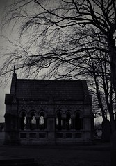 (_Evi_) Tags: mood sky trees darkart emotional black blackandwhite bnw monochrome graveyard cemetery