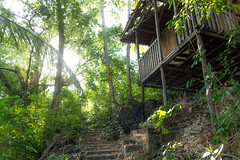 Indonesia (slow paths images) Tags: indonesia asia sulawesi togianislands kadidiri forest jungle trees tropical nature light naturallight sunshine house woodenhouse abandoned remote isolated wild travel