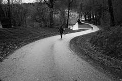 The snake trail (stefankamert) Tags: stefankamert way trai people blackandwhite blackwhite noir noiretblanc street fujifilm fuji x100 x100s trees