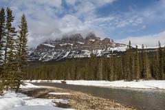 Castle Mountain, Alberta (getting back ( slowly )) Tags: castlemountain alberta