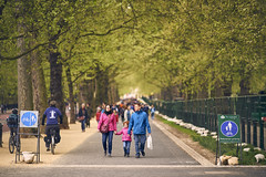 Green Park (Giuseppe Moschetti.) Tags: giuseppe moschetti nikon d810 london uk zeiss milvus 135mm apo sonnar aposonnart2135 zf2 carlzeiss green park depth field trees bike walk travel