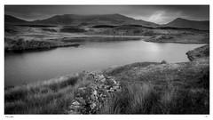 The Lake (jeremy willcocks) Tags: 22417 wales north uk lake blackandwhite mono wall water hills mountains jeremywillcocks wwwsouthwestscenesmeukfujixpro2 xf1024mm