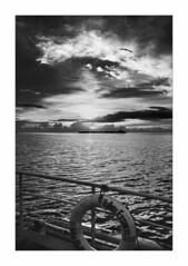 IMG_7786 (Carlos M.C.) Tags: holbox mañana madrugada despertar blanco negro color barco bote lancha ferry camarote rojo azul salvavidas amarre cuerda botes