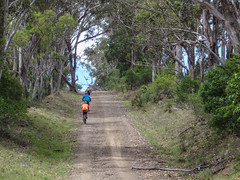 Gravel Road (Neil Ennis) Tags: bicentennialnationaltrail cycling killarneybarlowsgateroad mtb bnt