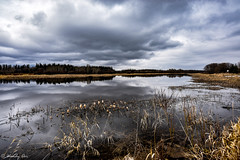 Gloomy Day (Wendy Oor) Tags: water waters pond lake river scenery clouds reflections outdoors