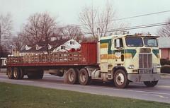 "Freightliner COE ""Darica Tkg"" #34 (PAcarhauler) Tags: freightliner coe cabover semi truck tractor trailer"