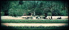 (tschmidt4) Tags: park trees people tree statue bench way walk bank gras persons benches bume baum weg bnke rasen personen spaziergang spazierengehen pixlr