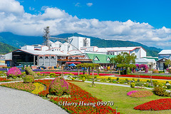 Harry_09976,,,,,,,,,,,,,,,,,, (HarryTaiwan) Tags: taiwan    d800                harryhuang       hgf78354ms35hinetnet