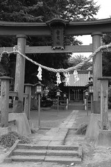(photophan5) Tags: japan nikon  v2  185mmf18