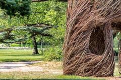 Centro d'Arte e Natura (Nicola Malaguti Photographer) Tags: camper francia viaggi loira castelli giardini