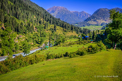 KSMR-1104-20130621And2more copy.jpg (Miki Badt) Tags: india kashmir ind