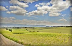 paesaggio toscana (LPstyle) Tags: street trip travel summer sky italy green field clouds photoshop photography nikon tuscany hd nikkor toscana hdr cortona turist d7000