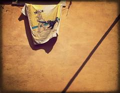 messaggio promozionale (Rino Alessandrini) Tags: costumes sea summer dog baby muro cane wall advertising solar back costume mare shadows estate tan towel spray ombre retro creme stretched sponge coppertone sunscreen lotion diagonale pubblicit bambina solari interval skincare diagonally asciugamano abbronzatura spugna intervallo steso bronzing messaggiopromozionale lozione cremaabbronzante promotionalmessages solaricoppertone solarcoppertone