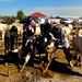 U.S. Army Africa veterinarian reviews South Sudan program