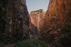 IMG_6206 (Andrew Holzschuh) Tags: camping arizona hiking grandcanyon backpacking grandcanyonnationalpark