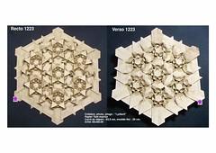 rectoverso1223 (LydiaDiard paperfolledingue) Tags: art geometric paper 3d origami hexagon papier tessellation tesselation paperfolding volume volum tant lydiard géométrique pliage hexagone paperfold pliagedepapier lydiadiard paperfolledingue