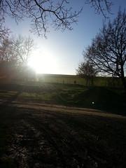 The track (Cell Shocked) Tags: new sun amazing track farm cell canterbury zealand rise shocked rakia