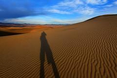 Long Shadow on the Dunes (Dave Toussaint (www.photographersnature.com))