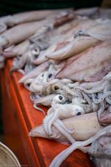 Fresh Squid, Dungun Market (Luke Robinson) Tags: asia honeymoon market squid malaysia seafood dropbox terengganu dungun 2013 tanjungjara kualaterangganu