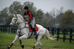 Saturday started dark and overcast and then the rain came. (Tackshots) Tags: lexington crosscountry event eventing horsetrials kentuckyhorsepark hagyard midsouththreeday