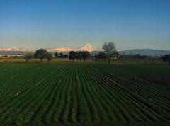 Routes to the mountain ($ALEH) Tags: mountain train iran damavand hike tehran  1000views        imbing haftx salehdinparvar