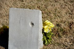 Bullet Hole? (Adventurer Dustin Holmes) Tags: cemeteries cemetery grave graves gravestone tombstones gravemarkers gravemarker newhomecemetery