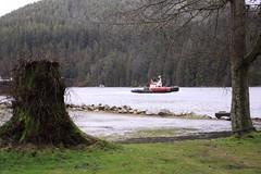 stump 'n tug (waferboard) Tags: park marine burnaby inlet tugboat burrard barnett