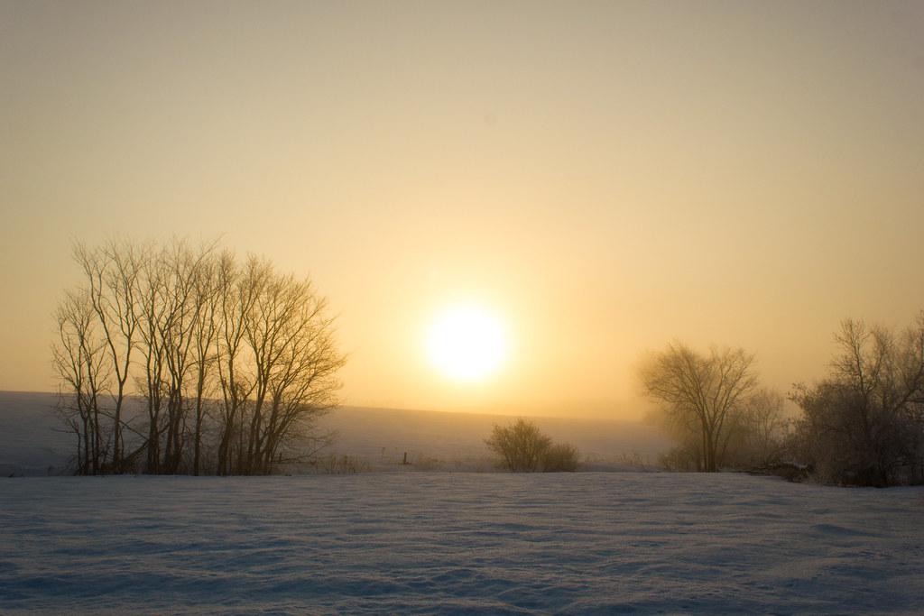 Matin d'hiver (Explored)