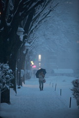 A Blizzard Hits Tokyo (El-Branden Brazil) Tags: white snow storm ice weather japan umbrella asian japanese tokyo asia blizzard {vision}:{outdoor}=0987 {vision}:{sky}=0858