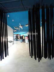 vista m (► ► www.giselas.com.ar ◄ ◄) Tags: museo vista sur argentina punta tombo chcubut especies autoctonas pinguinos zorro orcas
