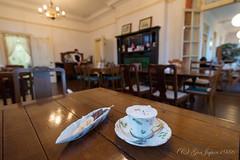 ヴィクトリアローズ (GenJapan1986) Tags: 2016 カフェ ティールームヴィクトリアローズ 函館市 北海道 旅行 紅茶 日本 hokkaido travel nikond610 japan cafe tea